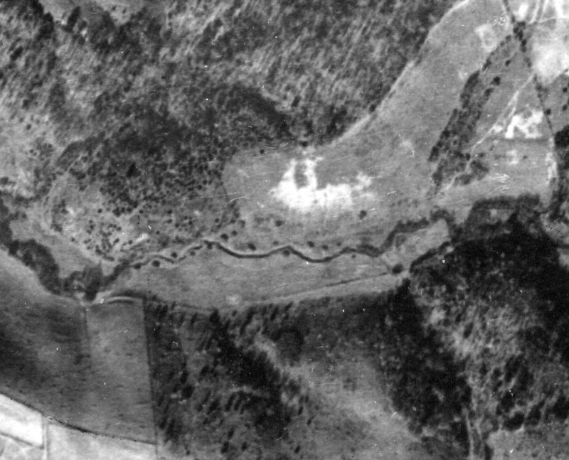Aerial photograph of Floyd Speedway site, 1953
